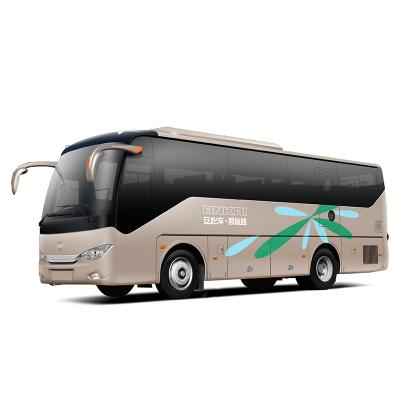 12m luxury coach